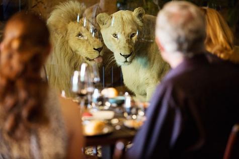 White Lions Dining - Jamala Wildlife Lodge